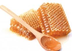 Honig und Imkereiprodukte